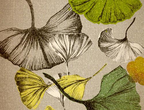 Illustrationen für einen Kalender